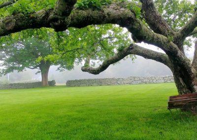 Southcoast on a Foggy Day